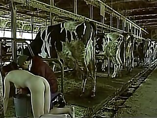 Asian woman pretending to be a cow milked him as a man boobs